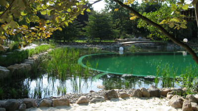 eco pool designs (12)