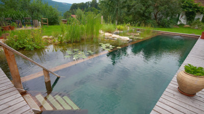 eco pool designs (13)