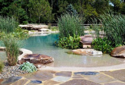 eco pool designs (14)