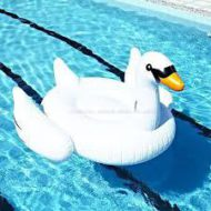 Giant_Swan_Inflatable_Pool_Toy1__46698.1456233265.1280.1280.jpgc-2-190x190