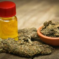 Medical Marijuana Cannabis oil